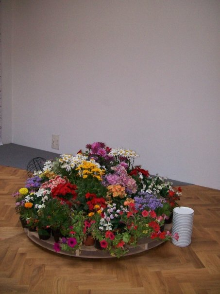 Flowers by Pascal Robert, 2009